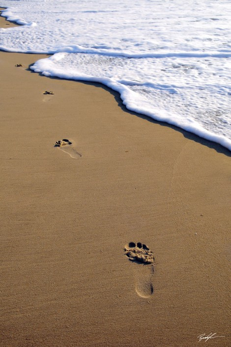 Footprints on the Beach, Outer Banks North Carolina