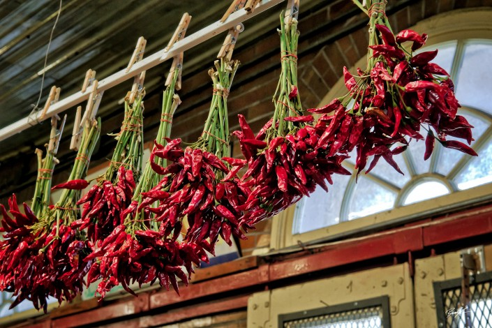 Red Chili Peppers Drying
