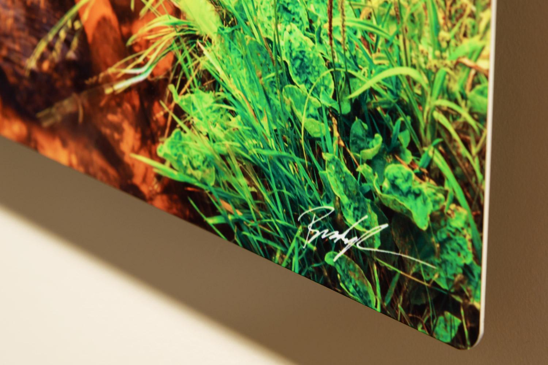Metal Print corner treatment - Brady Kesner Photography
