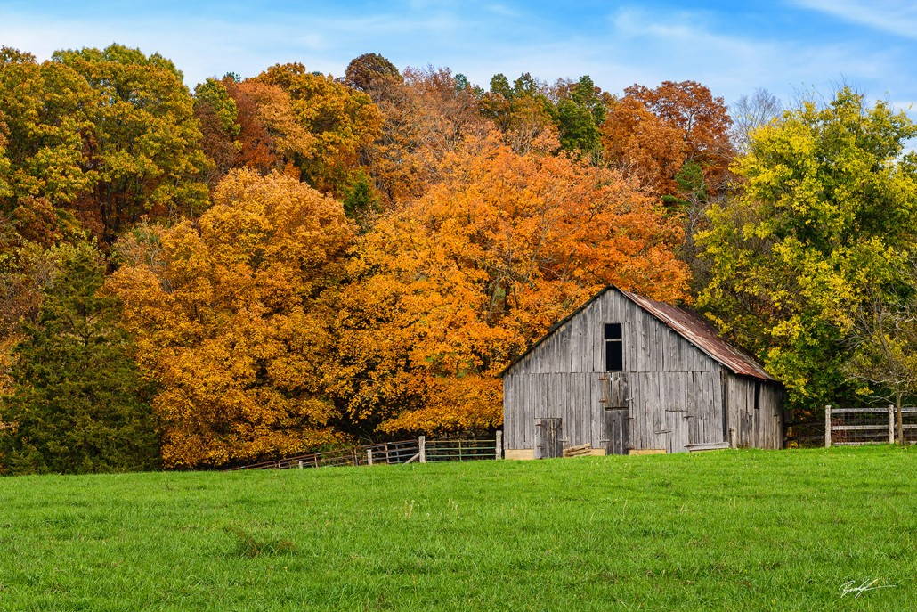 #R010 – Barn and Autumn Leaves Missouri - Rural Landscapes - Brady Kesner Photography