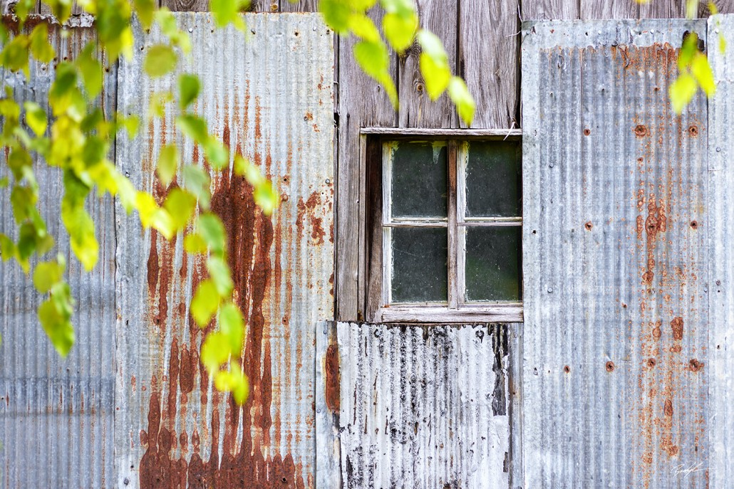 Metal Barn Window and Summer Branches Rural Missouri