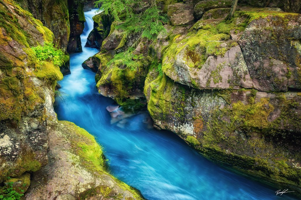 Avalanche Creek Glacier National Park Montana