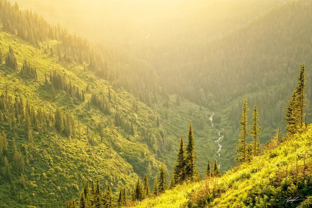 Sunlit Valley Glacier National Park Montana