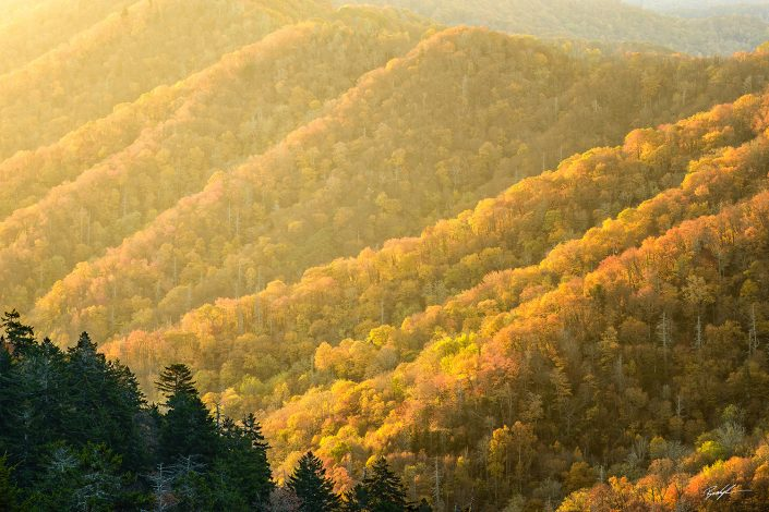 Sunrise Newfound Gap Smoky Mountain National Park Tennessee