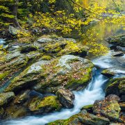 Little River Smoky Mountain National Park Tennessee