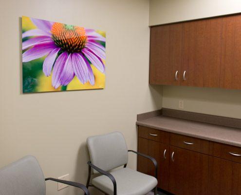 Nature Photography Hospital Room Decor