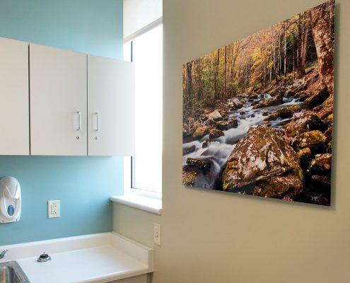 Nature Photography Hospital Exam Room Decor