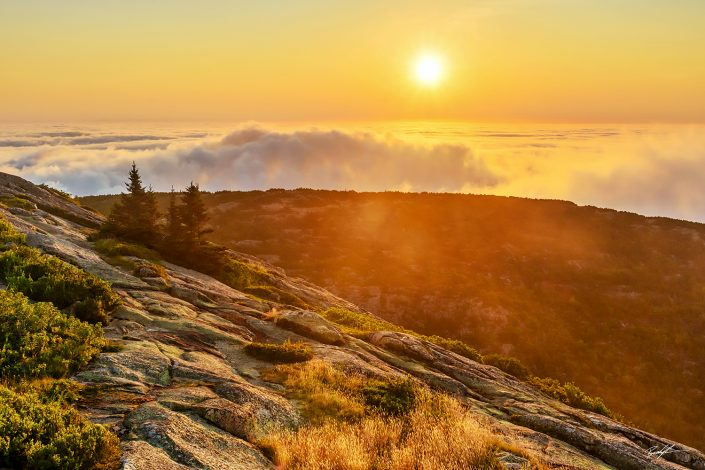 Cadillac Mountain Sunrise Acadia National Park Maine