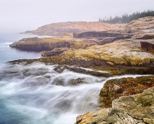 Schoodic Peninsula Fog Acadia National Park Maine