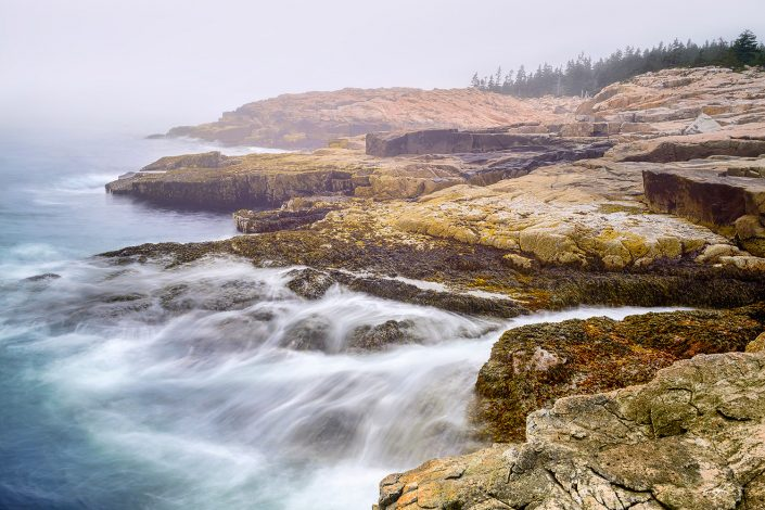 Schoodic Peninsula Fog Acadia National Park Maine