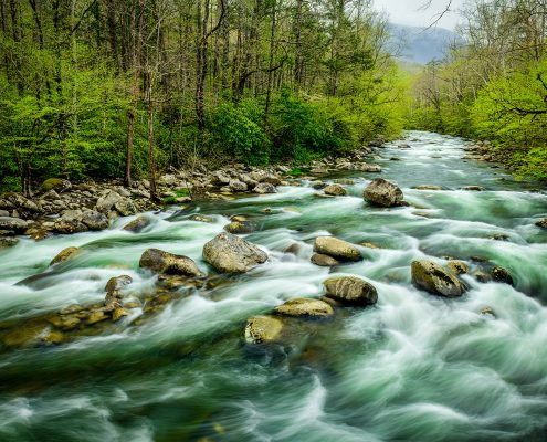 Greenbrier Little Pigeon River Smoky Mountains National Park Tennessee