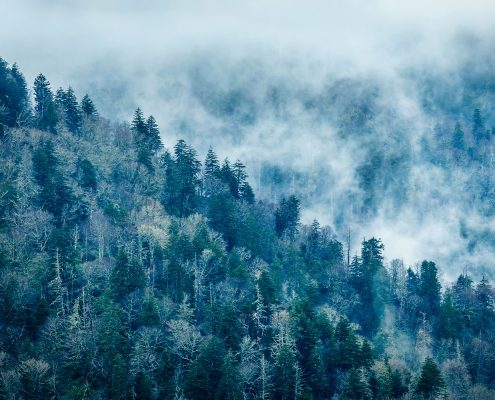 Smoky Mountains Blue Fog Tennessee