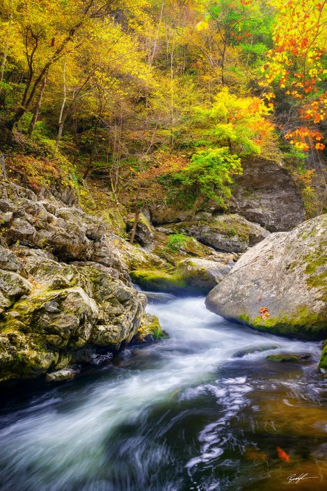 Autumn Little River Smoky Mountain National Park Tennessee