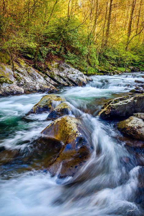 Middle Prong Little River Smoky Mountain National Park Tennessee