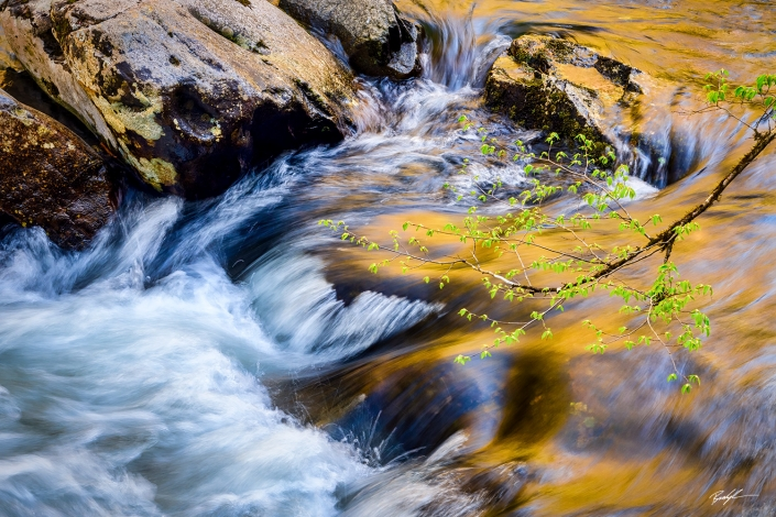 Smoky Mountain National River Reflection