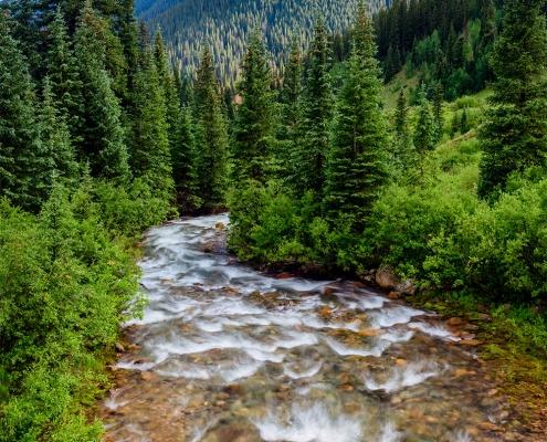Winding River San Juan Mountains Colorado