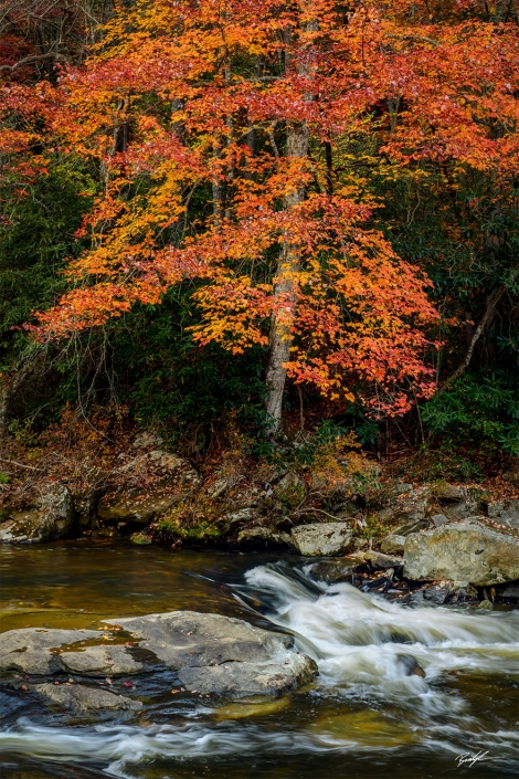 Linville River Blue Ridge Parkway North Carolina