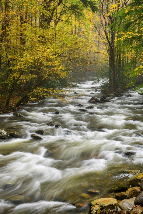 Smoky Mountain National Park Greenbrier Autumn Tennessee