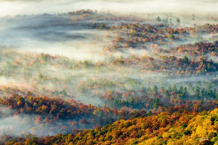 Fog Valley Blue Ridge Parkway North Carolina