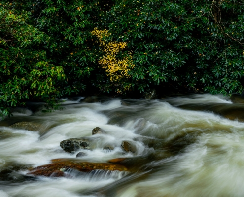 Little Pigeon River Smoky Mountain National Park Tennessee