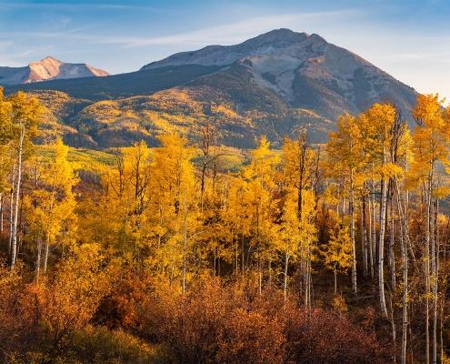 Aspens Cimarron Range Colorado