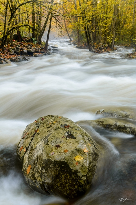 Greenbrier Little Pigeon River Smoky Mountain National Park Tennessee
